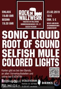 SONIC LiQUID Concert, Walzwerk, Feb 2019